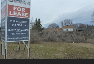 In the spring of 2013, a healthy stand of trees stood at the southern end of the commercial property at the corner of Merivale and Burris.